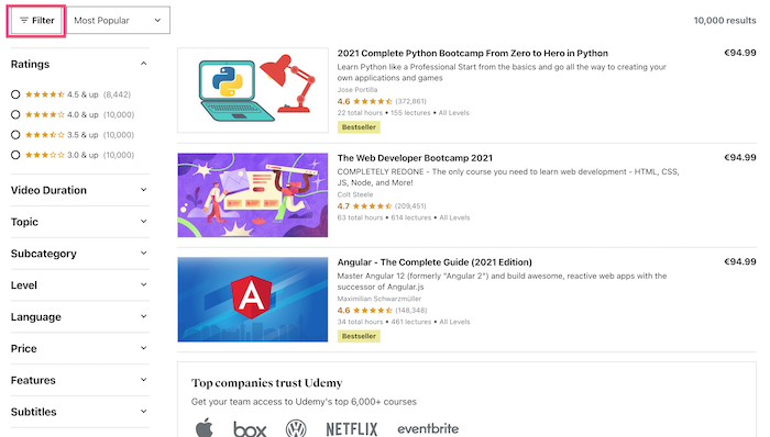 Udemy Filters