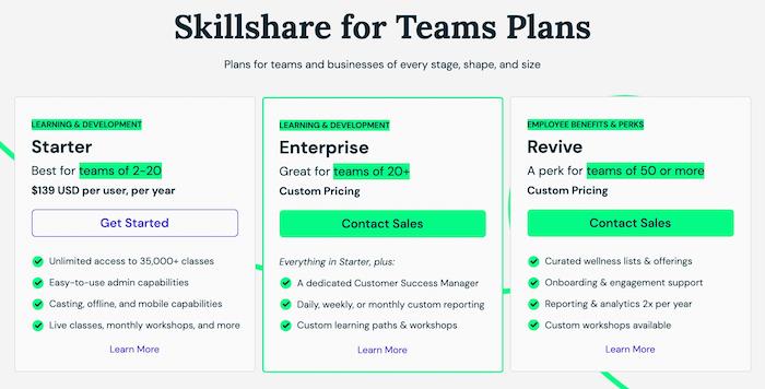 Skillshare Team Plans