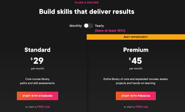 Pluralsight Individual Monthly Plans